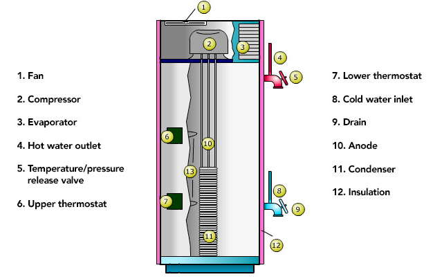 water heaters that are commonly found in all types of water heaters. These parts are listed below:  Flue pipe  Coldwater turn off valve  Draft diverter  Temperature and pressure relief valve  Overflow pipe  Hot water outlet  Sacrificial anode rod  Dip tube  Elements  Insulation  Drain valve  Thermostat  Thermocouple  Gas supply valve